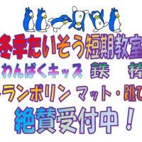バス掲示 – コピー – コピー – コピー (2) – コピーのサムネイル